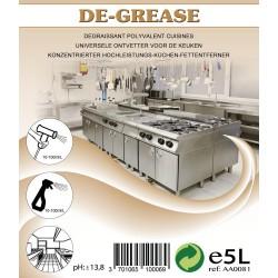 DE-GREASE (EX DEGRAISOL 400) 5 LITRES